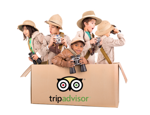 10 Facts You May Not Know About TripAdvisor